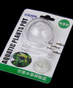 Mini Akrilik Akvaryum Bitki Saksısı