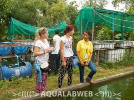 students at aquaculture farm