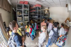students observing the fish collection at the IFReDI