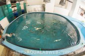 research facility with the fish for experiment