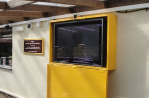 Anti Theft TV Screen Enclosures