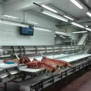 Smart Food Factory Display Screens