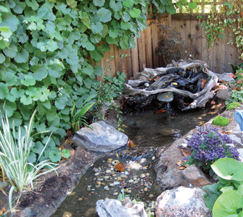 Working Big Ideas Into Small Backyard Spaces - AQUA Magazine on Backyard Stream Ideas id=40124