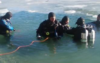 Icediver Specialty