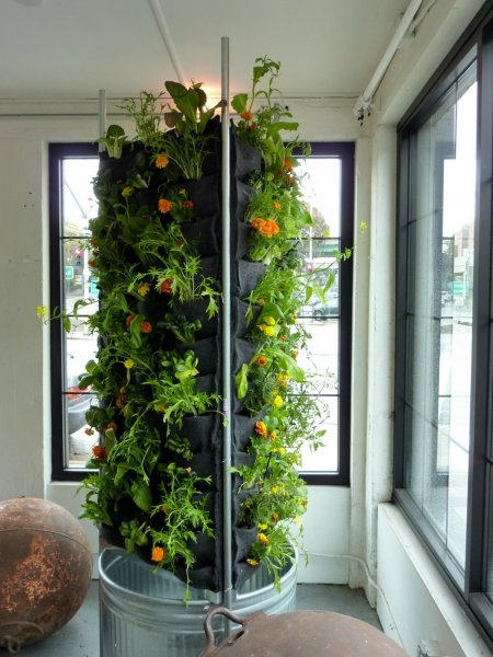 indoor vertical garden system Vertical Aquaponics : City-dwelling Vegetable Farming