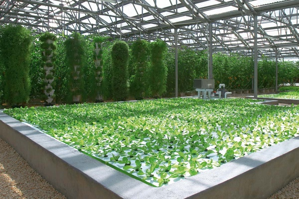 tips for designing energy efficient aquaponics greenhouse on Commercial Hydroponic Systems Design id=48753