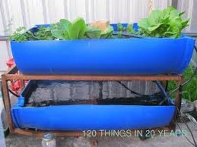 Les bassins poissons et bacs de culture pour l 39 aquaponie for Bac plastique poisson jardin