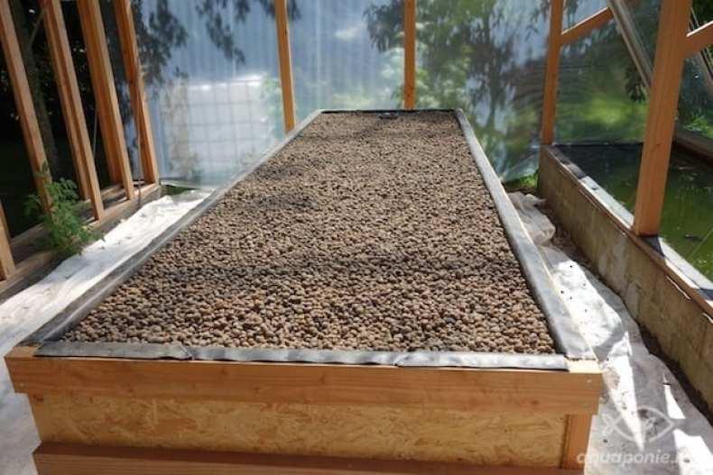 Bac d'aquaponie en bois rempli de billes d'argile