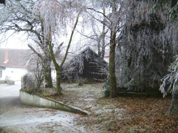 pleissing, winter, raureif, garten