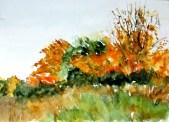 aquarell, landschaft, england, gebüsch, büsche, watercolor, landscape, bushes