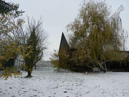 pleissing, schnee, snow, bäume, trees, garten, garden, weide