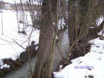 bach, creek, winter, schnee, snow, bäume, trees, pleissing, prutzenbach