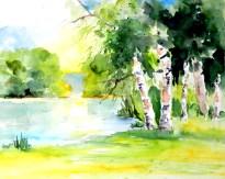 aquarell, watercolor, waldviertel, gmünd, see, lake, teich, pond, landschaft, landscape, paysage, aquarelle, lac, spiegelung, reflection, réflexion, birken, birch trees, trees, bäume, bouleau, arbres