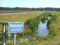 weinviertel, bach, beck, creek, ruisseau, ru