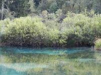 berg, mountain, mont, gebirge, mountains, montagne, teich, pond, étang, landschaft, landscape, paysage, naturpark, nature park, parc naturel, slowenien, slovenia, slovénie, zelenci
