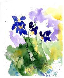 aquarell, watercolor, aquarelle, schneeglöckchen, snowdrop, perce-neige, zyklamen, cyclamen, veilchen, violet, viola, violette,
