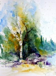 aquarell, watercolor, aquarelle, teich, pond, étang, birke, birch tree, birch, bouleau, waldviertel, sommer, summer, été,