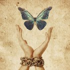 Free Humanity ~ 07/13/14 ~ by Janet Kira Lessin