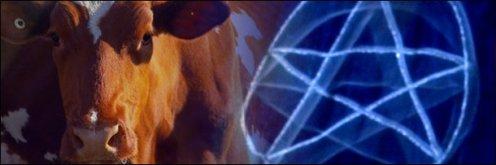 Cattle-Mutilations-56397