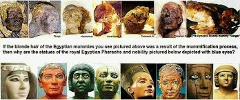 Egypt's Red Heads images