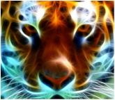 glowing blue tiger 14050_m