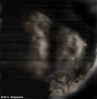 Moon 1920114_732749400078706_713905596_n (Custom)