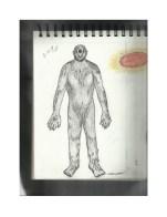 Ray Kosulandich 32-extraterrestrial-species-ray-kosulandich-multigenerational-contactee-1-638