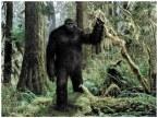 Bigfoot maxresdefault