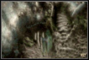 Moon various beings