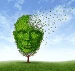 Human Dementia Problems