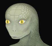 Reptilians c1ba3ed6e185945057d563cc544e6a0f
