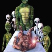 Reptilians tumblr_mgwcwx2LH81r654su_1358639664_cover