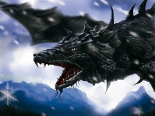 Black Dragon-22333