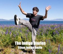 Ethan Indigo Smith B1dDpPaoMTS._SX800_