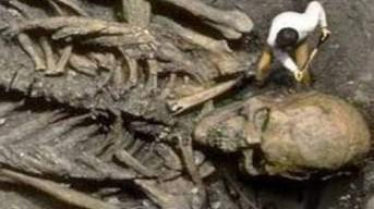 Giants Giant skeleten maxresdefault
