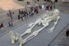 Giants giant-human-skeleton-image-330x220