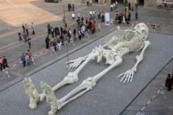 Giants giant-human-skeleton-image-330x220
