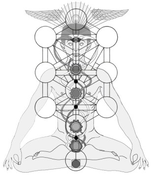 Trees of Life & Knowledge chakra-and-Tree