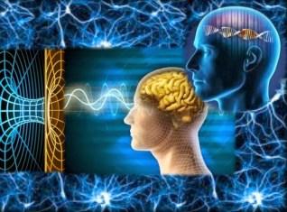Quantum Hologram RecalibrateBrain