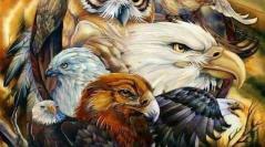 Ted Mahr & Eagle Heart ~ 11/21/17 ~ Ascension Center ~ Revolution Radio ~ Hosts Janet Kira Lessin & Theresa J. Morris