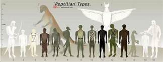 Tall White Reptilian Aliens 11114 th