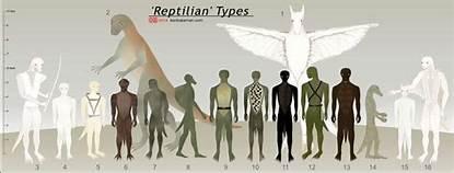 Tall White Reptilian Aliens 11114 th