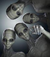 aliens Tall White Reptilian Aliens