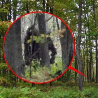 Bigfoot_news_Bigfoot_lunch_club_Scotland_Bigfoot_is_the_PA_hoax