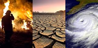 Climate Change 1 download