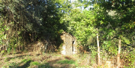 Plot of land with a stone ruin (RKS20CO)