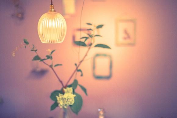 照明ライト アクアリウム