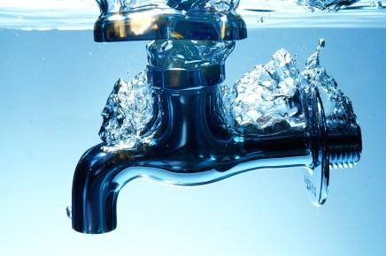 水道 水槽 熱帯魚