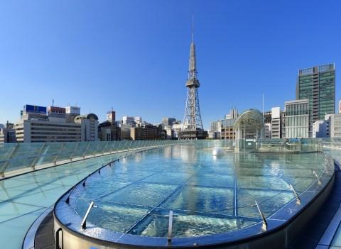 名古屋市の水槽レンタルの相場は?