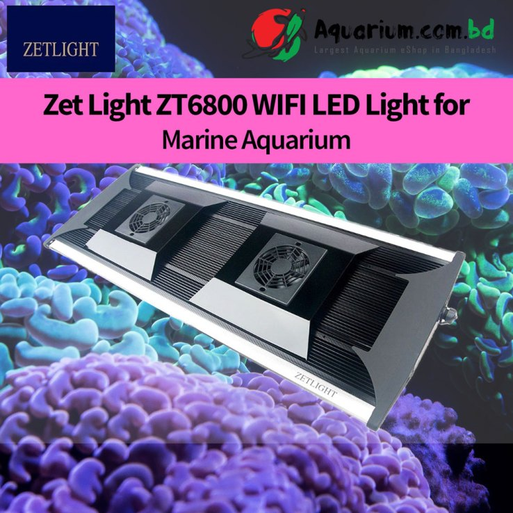 Marine LED QMAVEN ZT6800 WIFI